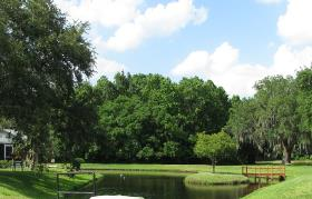 the Colonnades lake scenic views