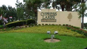 Cypress lakes lakeland florida Petra Norris